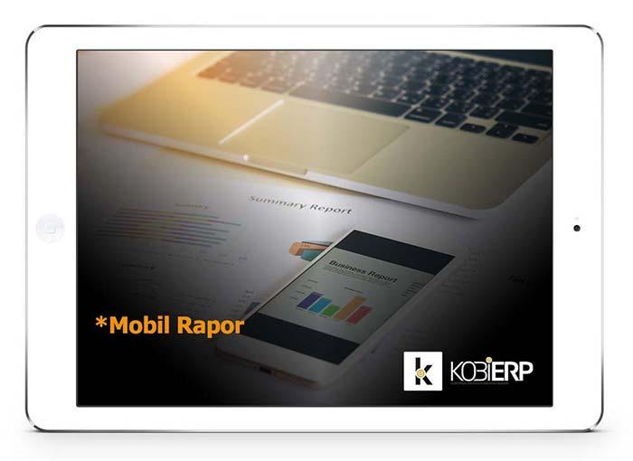 ERP Yazılımı Mobil Rapor